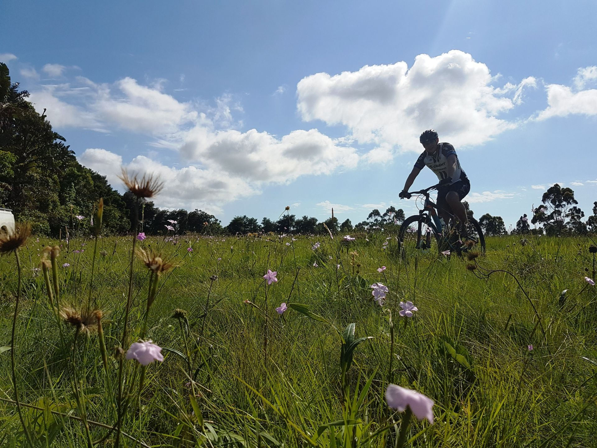 mountain biker_in_grasslands